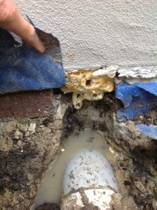 poor site drainage