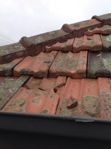 cracked roof tiles